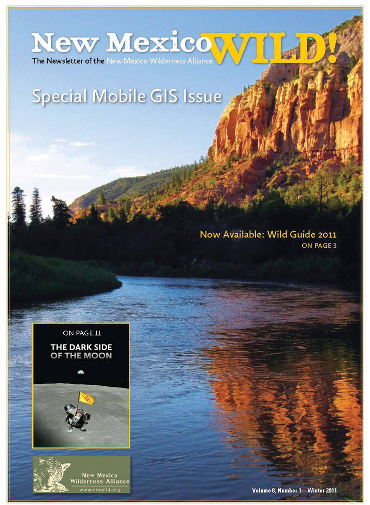 Special Mobile GIS Issue